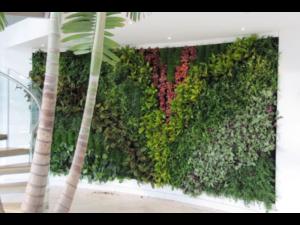 Living Plant Walls(14)
