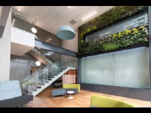 Living Plant Walls(4)