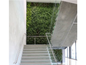 Living Plant Walls(5)