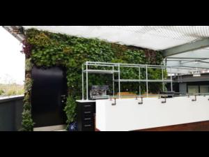 Living Plant Walls(6)