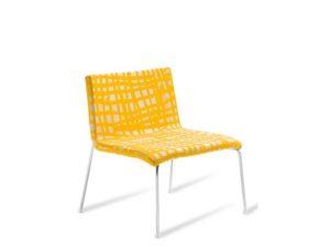 Advanta-Omega_WI_yellow-1.jpg