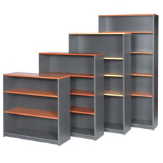 Bookshelf 1 (1200 x 900)