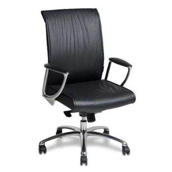 Stanely Mid-Back Task Chair